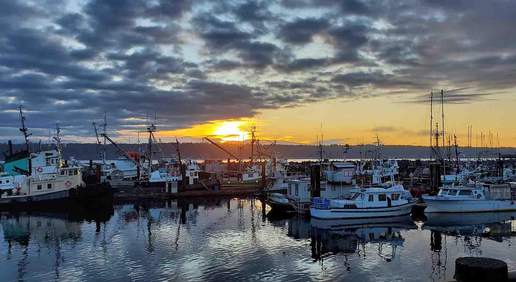 Campbell River marina at sunset