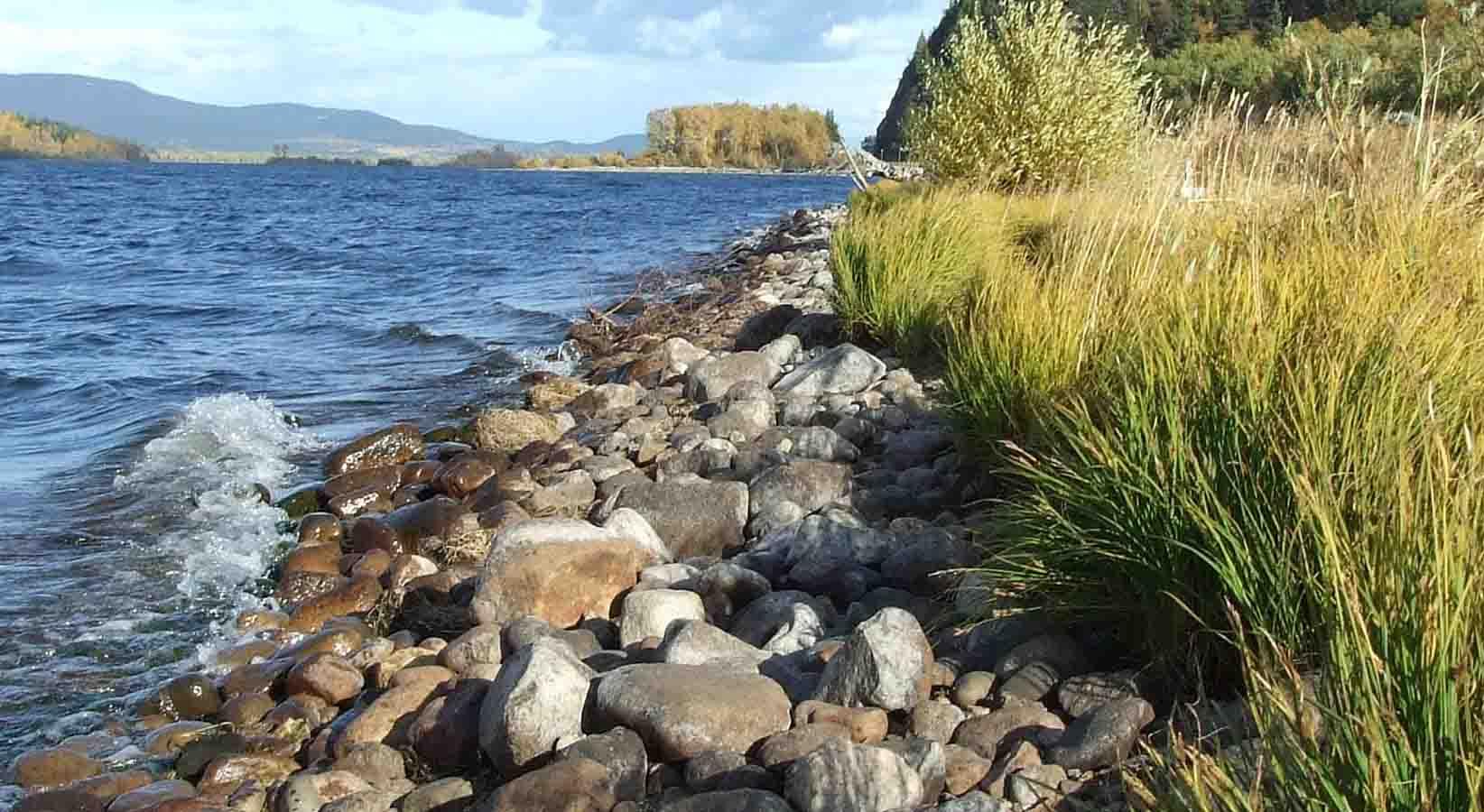 Fraser Lake shoreline