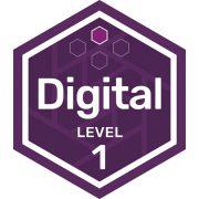IT digital badge level 1