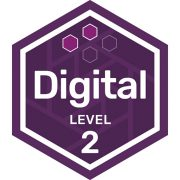 IT digital badge level 2