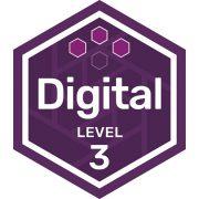 IT digital badge level 3