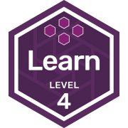 Participation badge level 4