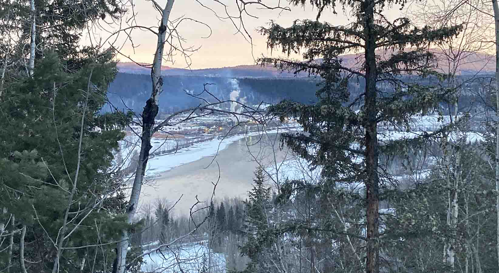 Quesnel, British Columbia seen through the trees